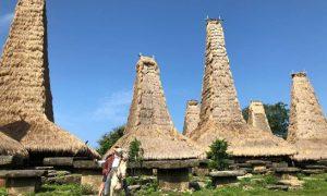 Sensasi Primitif di Kampung Adat Ratenggaro Sumba